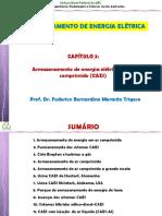 ACUM_CAP3_CAES.pdf
