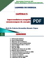 ACUM_CAP7_SMES.pdf