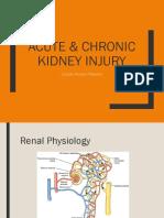 Acute Kidney SV