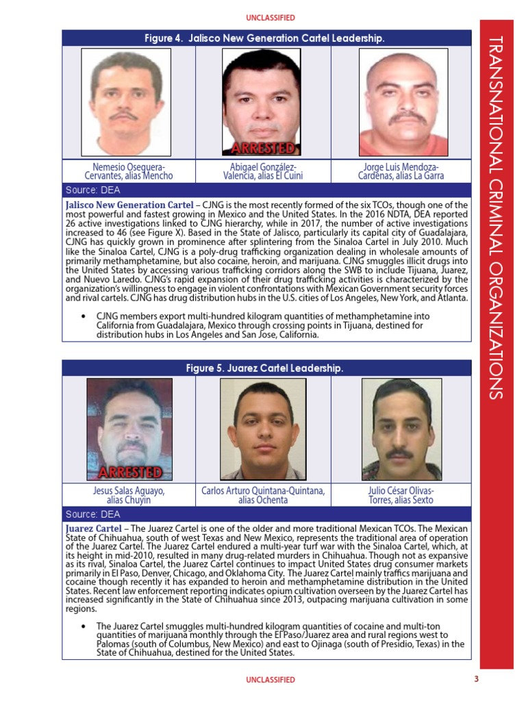 DIR-040-17_2017-NDTA-15-15 | Sinaloa Cartel | Illegal Drug Trade