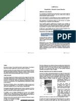 Capítulo 2 - Propiedades y Cálculo de Carenas Derechas