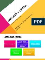amilasaylipasa-130321002723-phpapp02