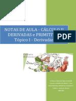 Notas de Aula - Derivadas e Primitivas - Cálculo II - UNIFEMM.pdf