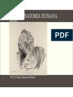 Anatomia Humana Compactado