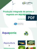 Minicurso Aquaponia.pdf