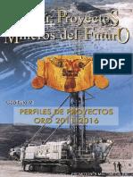 Perfiles de Proyectos de Oro Cap5