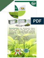 Attachment 2 - Tea_bag_brochure