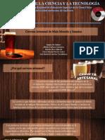 Presentación Cerveza