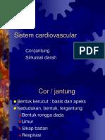 anatomi kardiovascular