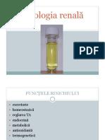 curs renal.pdf