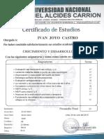 Ivan Joyo Castro