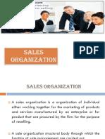 Chapter 3 Sales Organization