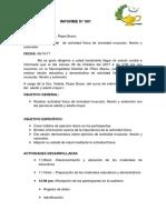 Informe n 002