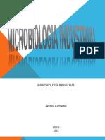 Microbiologu00eda Industrial