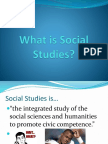 what is social studies 5 themes intro