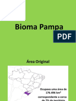 Bioma Pampa
