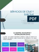 Servicios de Ceye y Subceye (1)