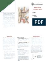99017763-Triptico-Democracia-y-Cultura-de-Paz.docx
