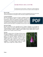 Flora y Fauna Noret de Chile