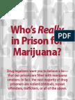 Whos in Prison for Marij
