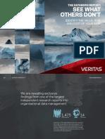 Veritas Databerg Report
