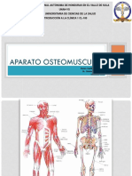 Aparatoosteomuscular3 150526024000 Lva1 App6892