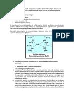 Cuestionario Practica de Proteinas