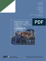 Estudio laboral aserraderos_misiones.pdf