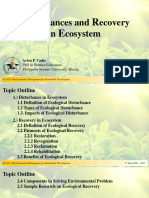 Disturbances and Recovery in Ecosystem