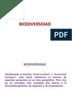 Biodiversidad_1º Medio 2017
