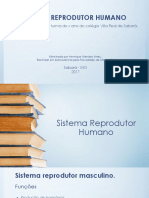 Palaestra Sistema Reprodutor Humano - Ensino Fundameltal 5 Série