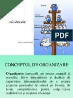 functia de organizare tema.pdf