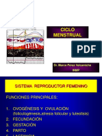 ciclo menstrual2009.ppt