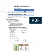 SOLUCION IRRIGACIONES.docx