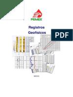 234778874-Registros-Geofisicos-PEMEX.pdf