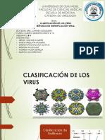 CLASIFICACION DE LOS VIRUS.pptx