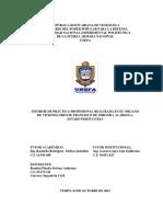 Informe de Practica Profesional Stefany Rondon Ingenieria Civil