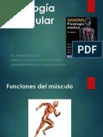 Fisiología Del Músculo