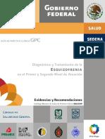 Diagnóstico y Tratamiento de La Esquizofrenia en El Primer y Segundo Nivel de Atención