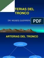 Arterias Pulmonar y Aorta 2