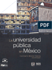 SES2009_UniversidadPublica