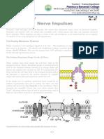 M - 97 Nerve Impulses