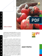 Dossier Anacarde 10web-2