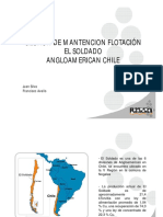 162997122-9-Gestion-Mantenimiento-Celdas-Flotacion.pdf