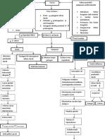 pathway dvt fix.docx