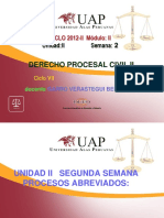 Semana 2 Proc. Civil II