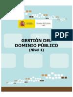 NIVEL1_GESTION_DOMINIO_PUBLICO4844.pdf