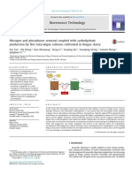 Carbohydrate Microalgae 2