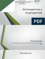 Capítulo 07 - Gimnospermas e Angiospermas