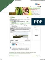 Artículo de ECUANIMICA-Importancia de La Calidad de Suelos y Agua en La Producción Acuícola